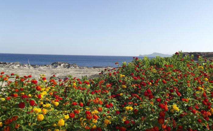 Terme di Kalithea Rodi Grecia